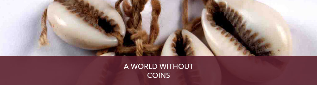 A world without coins